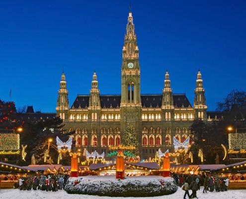 Christmas Market • Vienna, Austria