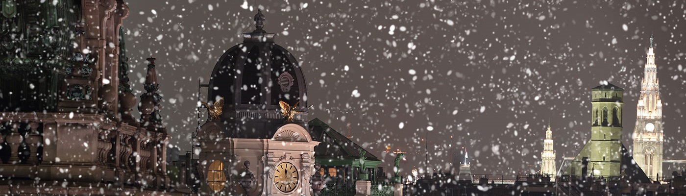 Rooftops with snow • Vienna, Austria