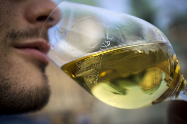 8_Budapest Wine Festival - Wine Tasting