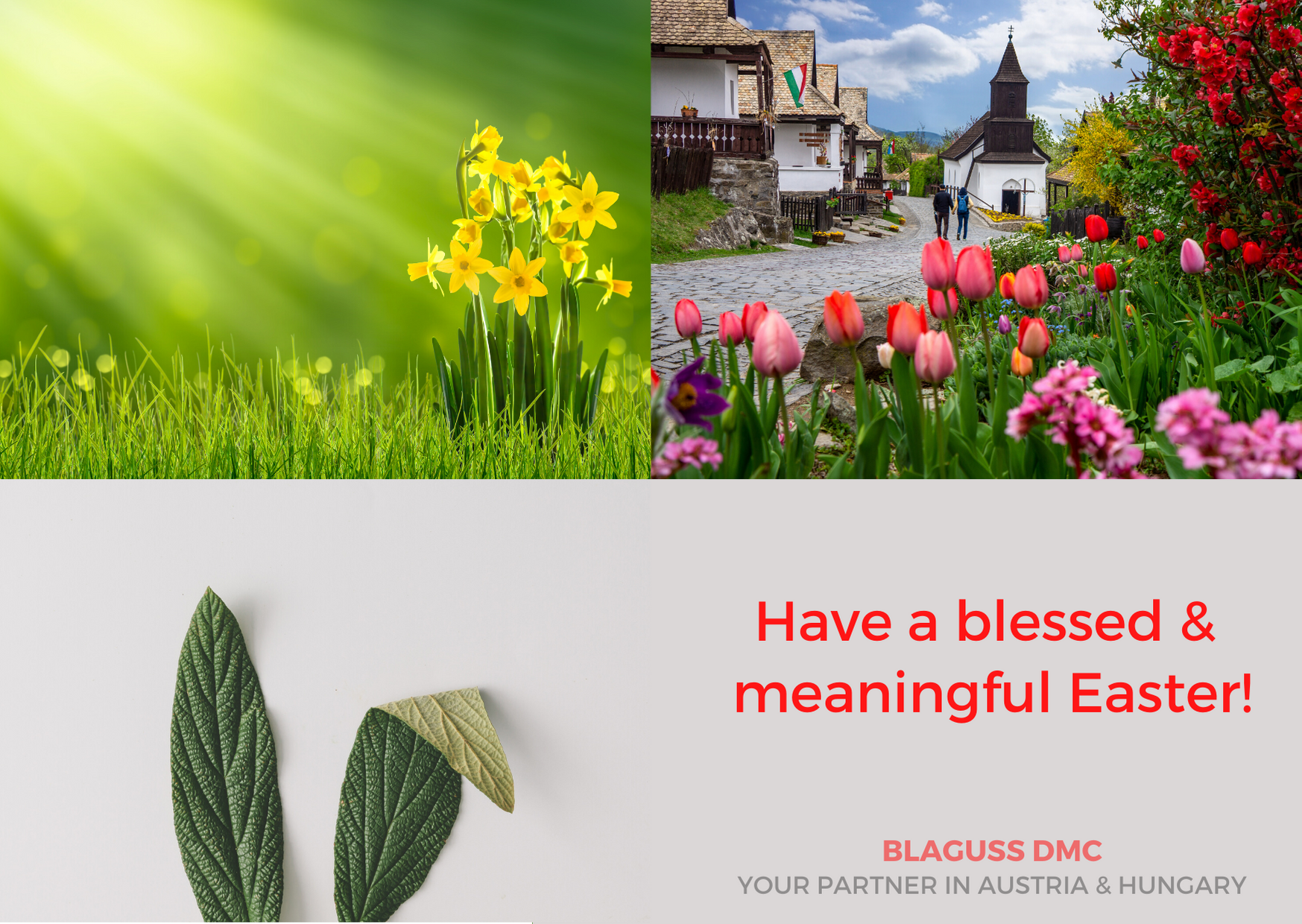Blaguss DMC Easter Wishes