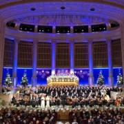 Christmas in Vienna • Vienna, Austria